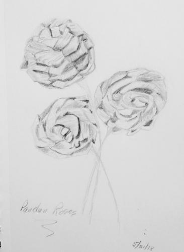 410- Pandan Roses