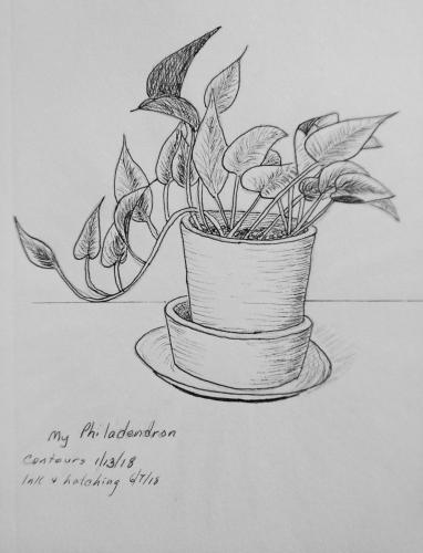 150 - My Philodendron Ink