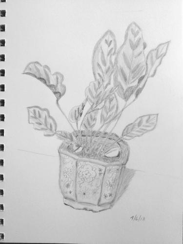 340 - Pretty Pot
