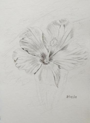 130-Bunga Raya 2 graphite