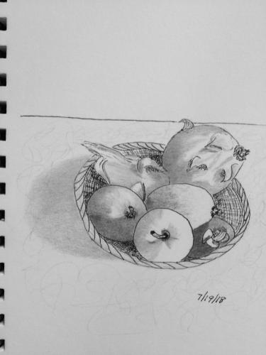 470- Tropical fruit basket ink and graphite